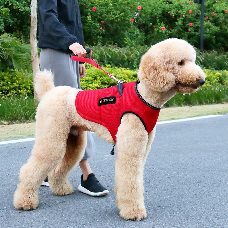 Service dog mesh vest for sale